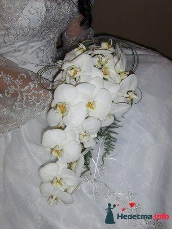 Фото 112902 в коллекции Свадебная флористика - Александра Ваш Свадебный Распорядитель