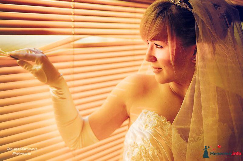 Солнце - фото 100910 Татьяна Мартынова