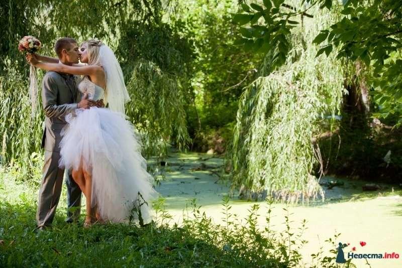 Фото 407505 в коллекции Свадебные фото - Фотограф Максим Жарников