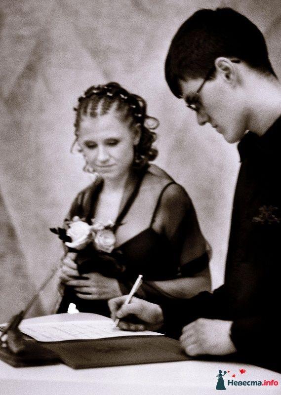 Фото 109750 в коллекции Свадьба - Talifa