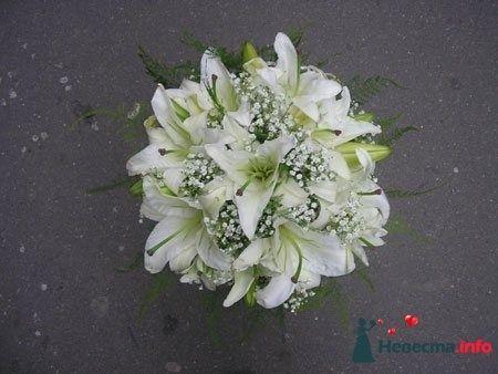 Фото 111496 в коллекции Любимые лилии - свадебные букетики