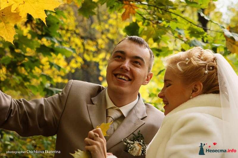 Фото 92237 в коллекции Свадьба - Фотограф Чичкова Екатерина