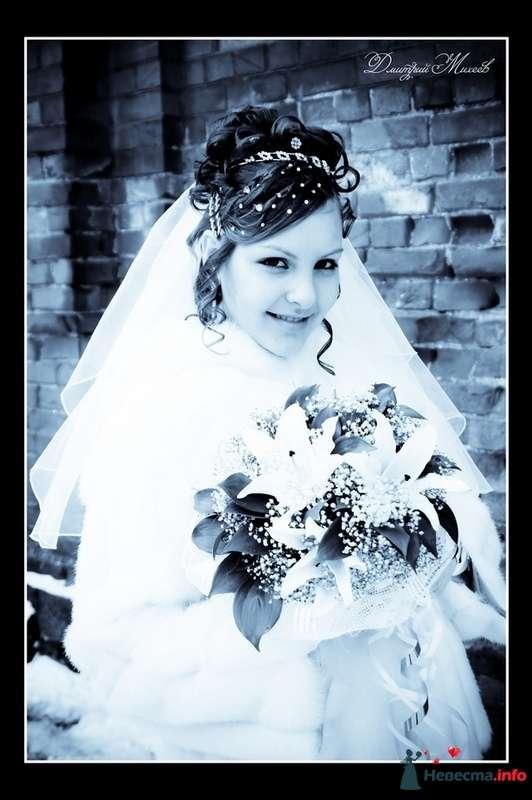 Фото 92693 в коллекции Свадьба - Дмитрий Михеев
