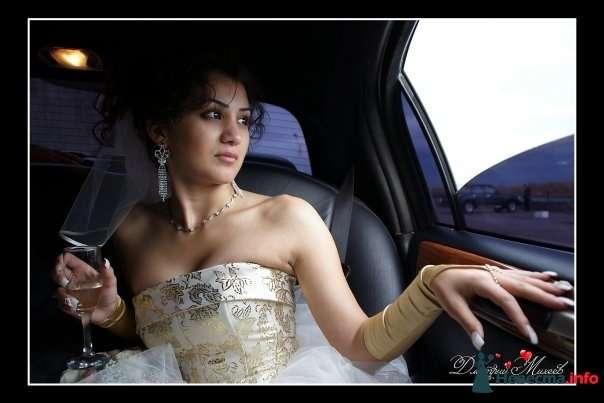 Фото 92696 в коллекции Свадьба - Дмитрий Михеев