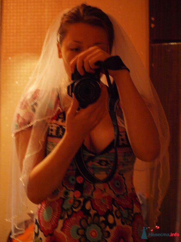 Фото 108916 в коллекции Мои фотографии - SAFRU