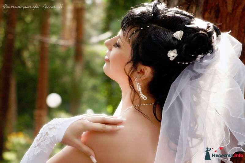 Фото 93225 в коллекции Назарова Елена - Lena N
