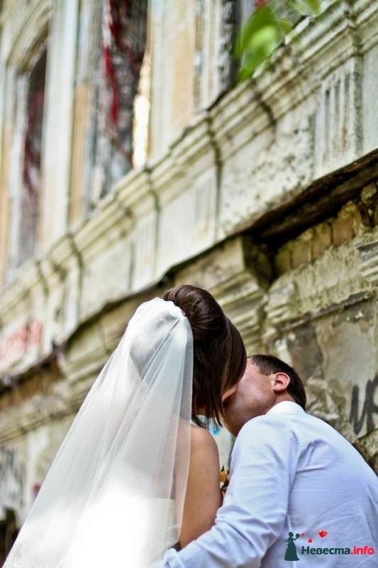 """Летний поцелуй - фото 261978 Студия """"Обручальное кольцо"""""""
