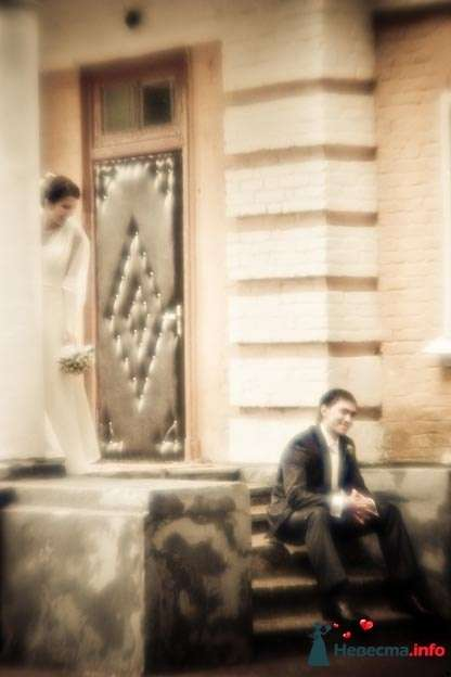 Фото 109356 в коллекции I love it - Фотограф Николай Майоров