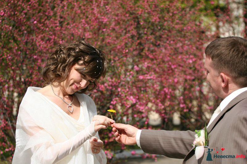Фото 96097 в коллекции Свадьба 9 мая - Агентство Министерство волшебства