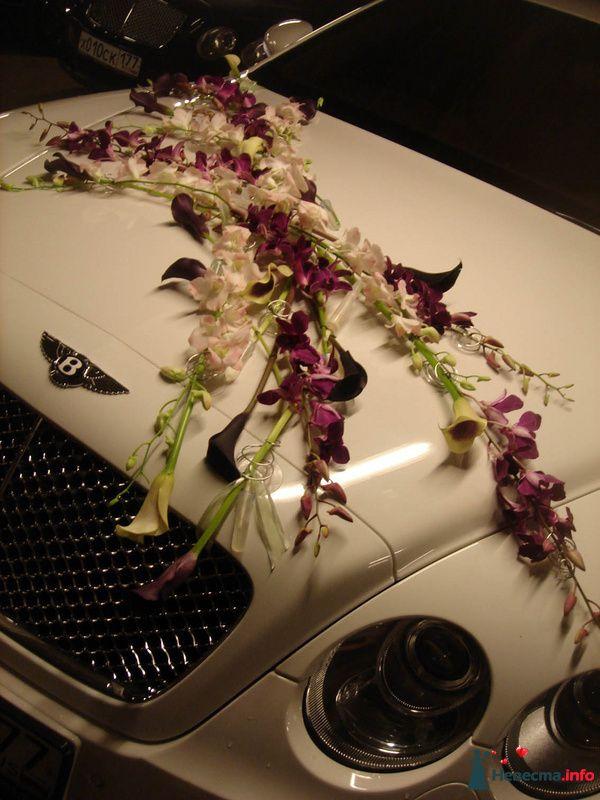 Фото 107389 в коллекции Оформление авто - Флорист-декоратор Янина Венгерова