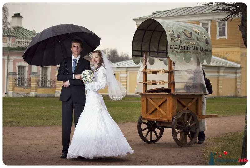Фото 97581 в коллекции Свадьбы - Владимир Агеев - профессиональный фотограф