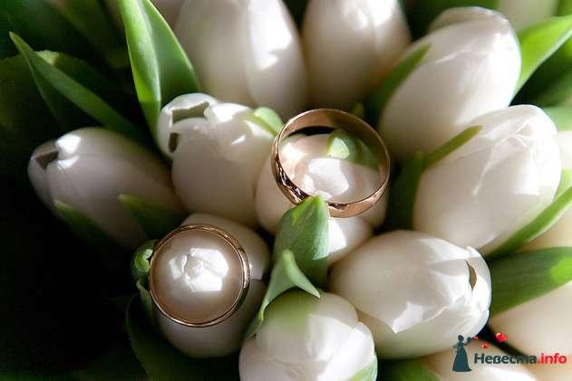 Фото 108818 в коллекции Свадьба - Невеста01