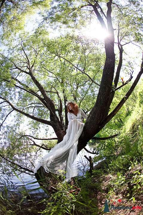 Фото 112317 в коллекции Свадьба - Невеста01