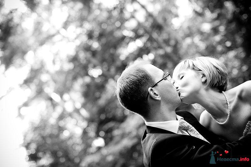 Фото 119349 в коллекции Свадьба - Невеста01