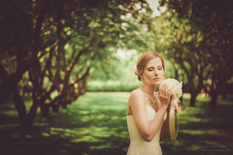 Фото 991543 в коллекции Мои фотографии - Свадебный фотограф Альберт Анна