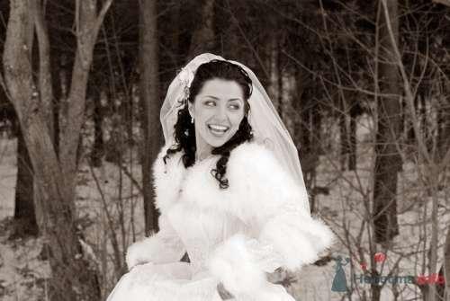 Фото 8513 в коллекции Свадебные фотографии - Невеста01