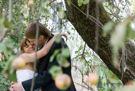 Фото 8516 в коллекции Свадебные фотографии - Невеста01