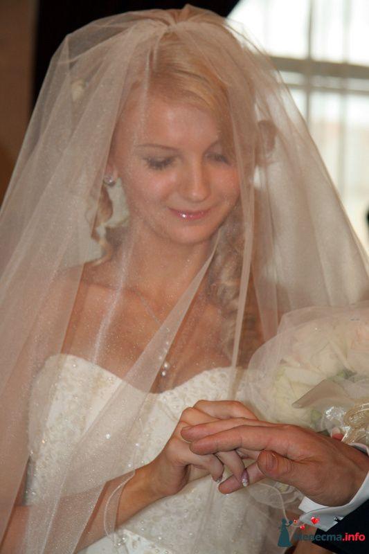 """Фото 99866 в коллекции Свадебные истории: Андрей и Александра - Студия """"ЛАДОС"""""""