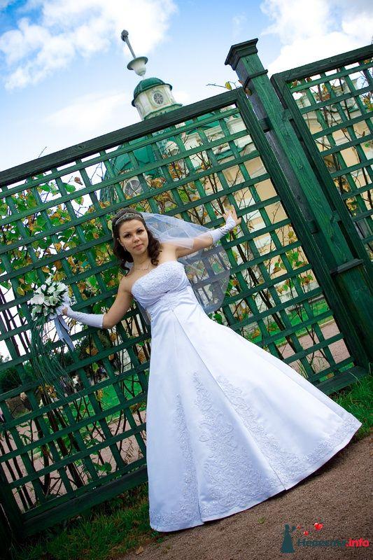 Фото 96980 в коллекции Наша свадьба - Алена R