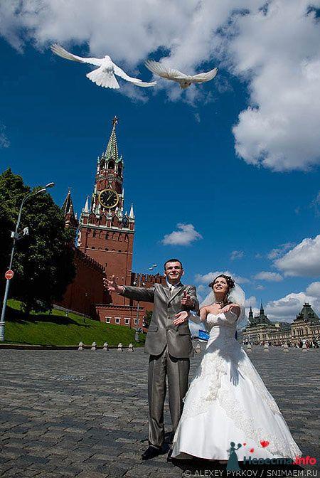 Фото 96967 в коллекции Мои фотографии - Алексей Пырков - фотограф свадеб и людей