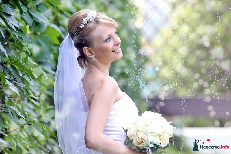 Невеста с букетом белых цветов стоит на фоне зелёных кустов - фото 98342 Фотограa Владимир Соколов