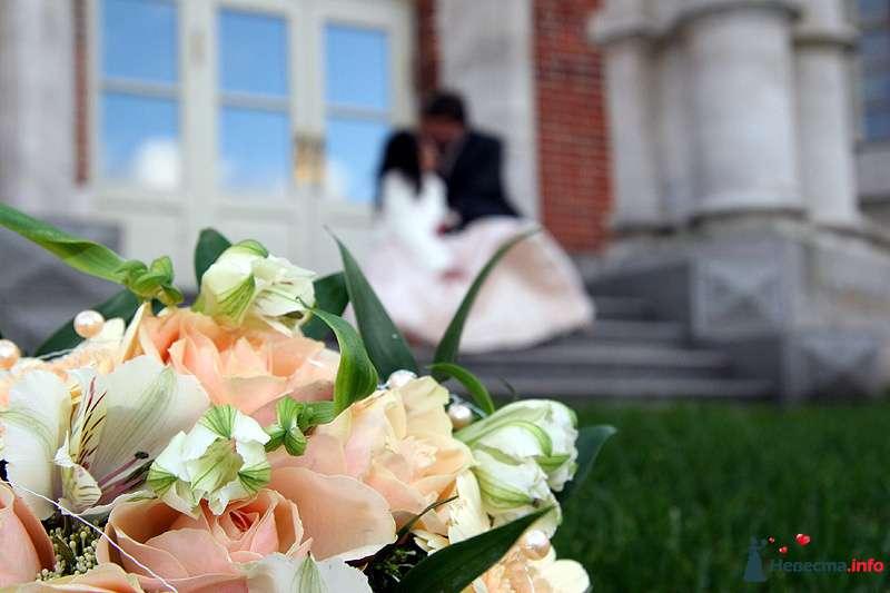 Фото 98480 в коллекции Свадебная фотография - Невеста01