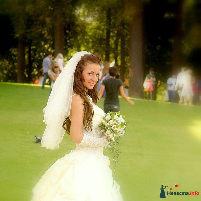 Фото 98485 в коллекции Свадебная фотография - Невеста01