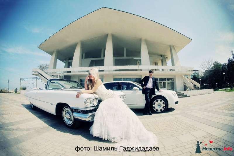 """Фото 97877 в коллекции Свадебное фото - Компания """"КАРАВАН-СЕРВИС"""""""