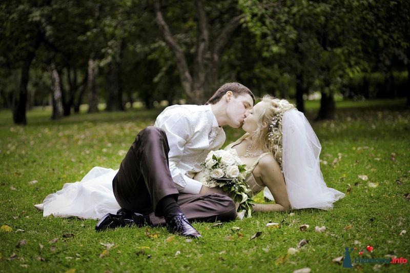 Жених и невеста целуются на траве в парке - фото 98312 Фотограф Бернард Роман