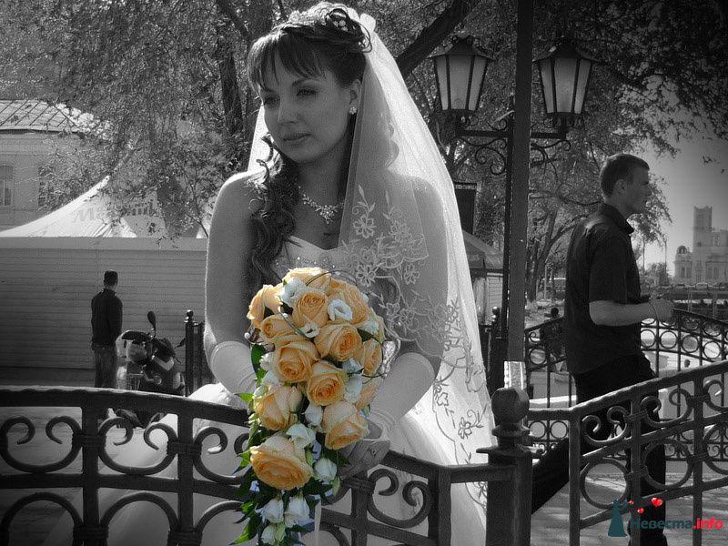 Фото 111790 в коллекции Мои фотографии - Невеста01