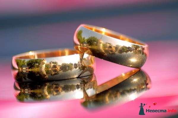 Золотые обручальные кольца, выполненные в классическом стиле, на фоне зеркальной поверхности. - фото 100046 Эдмонд