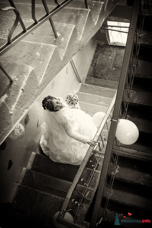 Фото 100042 в коллекции Фотограф Вячеслав Стукало - Свадебная фотография - Невеста01