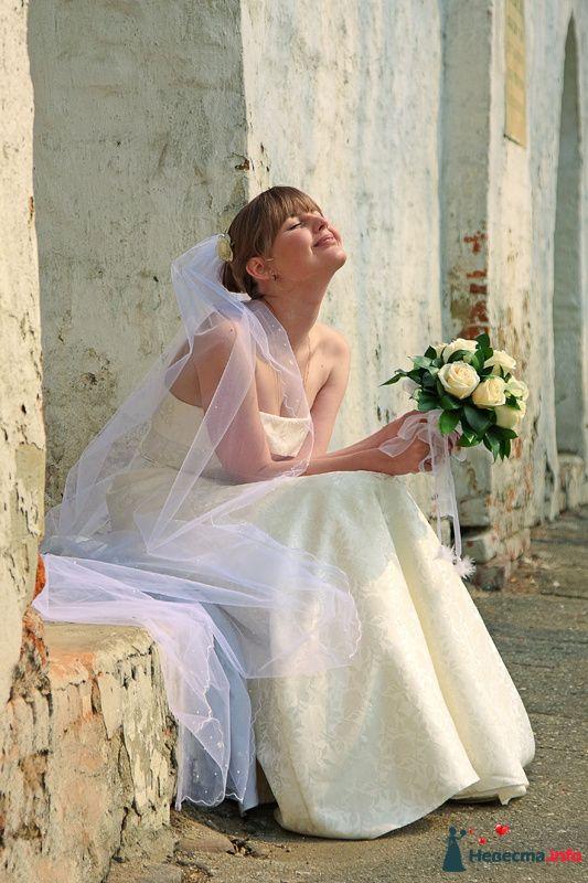 Фото 100048 в коллекции Фотограф Вячеслав Стукало - Свадебная фотография - Невеста01
