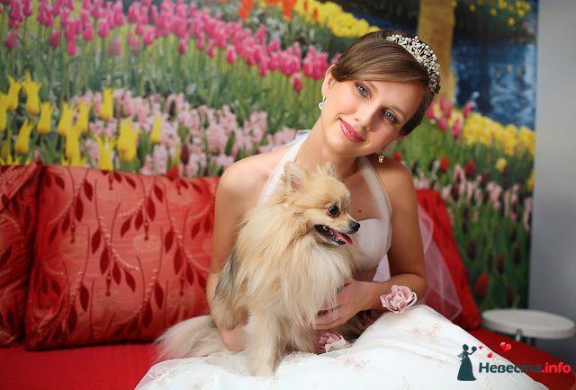 Фото 106698 в коллекции Мои фотографии - Свадебный стилист-визажист Ольга Родина
