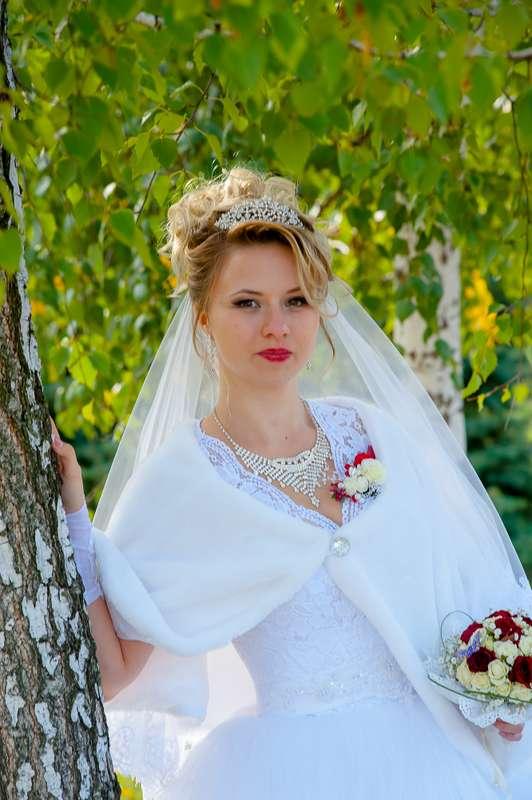 """Фото 13139094 в коллекции Портфолио - Видео-фотостудия """"Svetlana & Evgenij"""""""