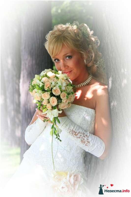 Фото 100894 в коллекции Мои фотографии - Невеста01