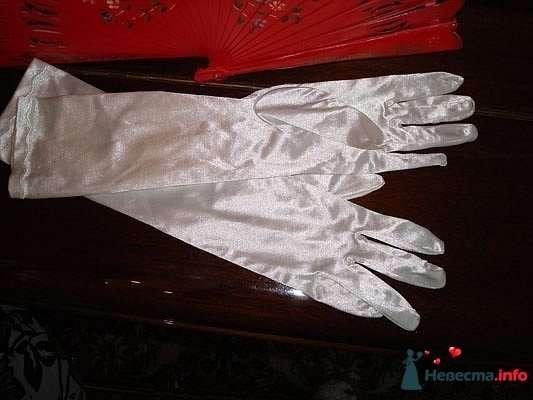 Фото 102219 в коллекции Перчатки, сумочки - Платье для Золушки - прокат свадебных платьев