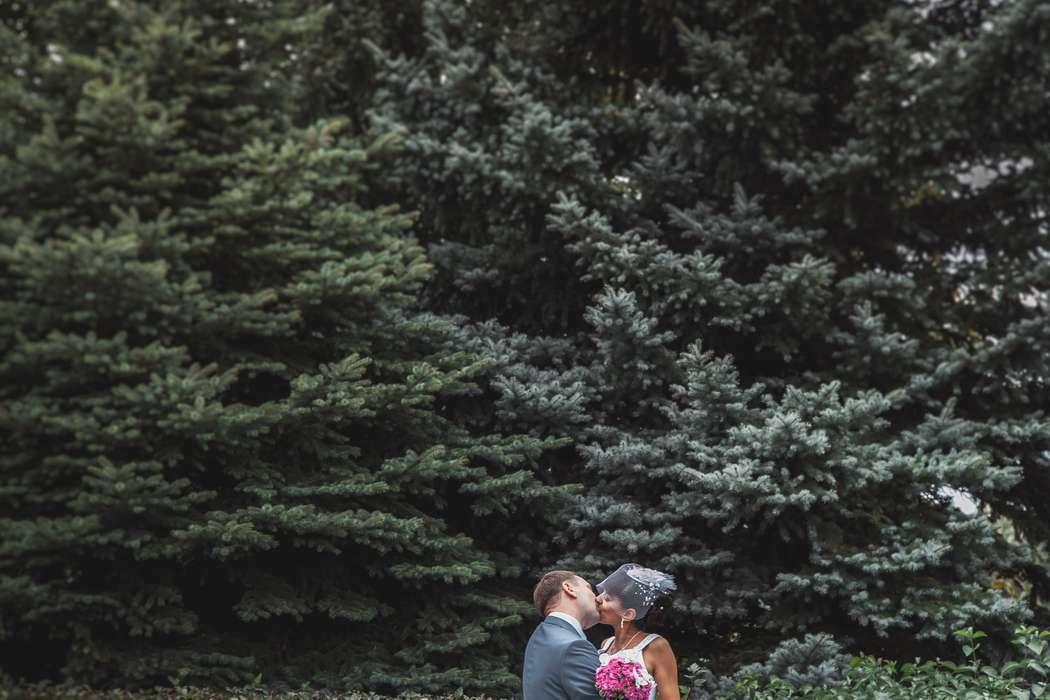 Нежный поцелуй - фото 1894349 Свадебный фотограф Вячеслав Тутанин
