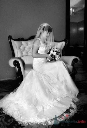 Фото 18601 в коллекции Свадебные - Фотограф Наталья Черкасова