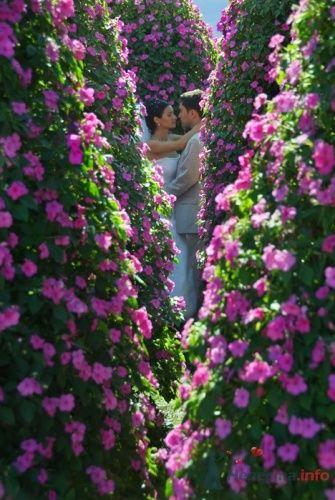 цветы среди цветов - фото 8168 Фотограф Олег Ванилар