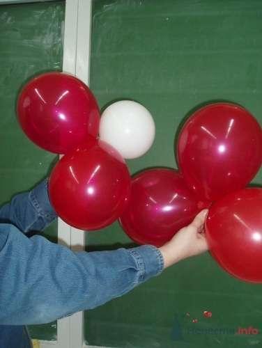 Фото 11477 в коллекции Как  украсить зал шариками самостоятельно - Невеста01