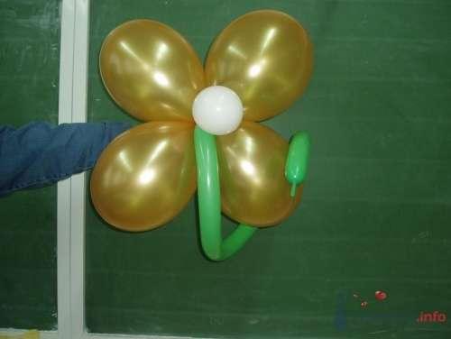 Фото 11490 в коллекции Как  украсить зал шариками самостоятельно - Невеста01