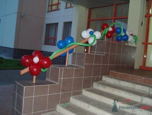 Фото 11496 в коллекции Как  украсить зал шариками самостоятельно - Невеста01