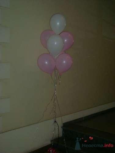 Фото 16364 в коллекции Как  украсить зал шариками самостоятельно - Невеста01