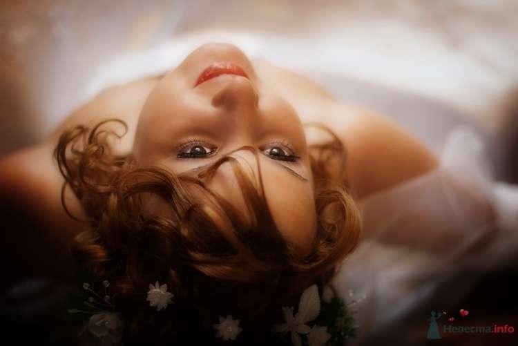 Фото 60798 в коллекции Мои фотографии - Екатерина79