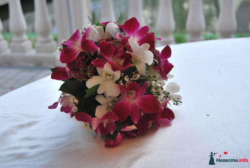 свадьба друзей - фото 124178 Невеста01