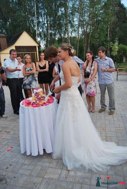 свадьба друзей - фото 124179 Невеста01