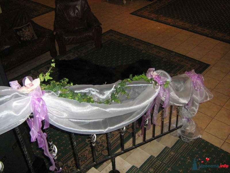 Фото 107281 в коллекции Мои фотографии - эх невестушка
