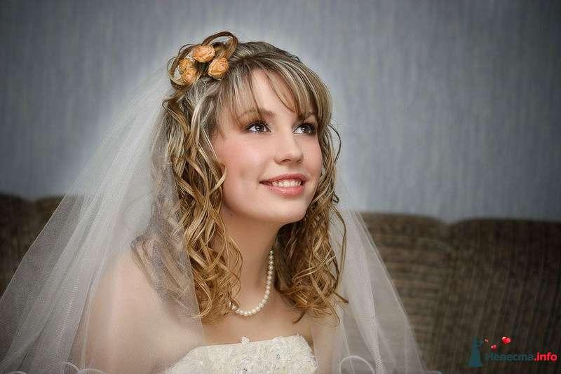 Фото 102667 в коллекции Свадебные фотографии - Алексей 89059256709