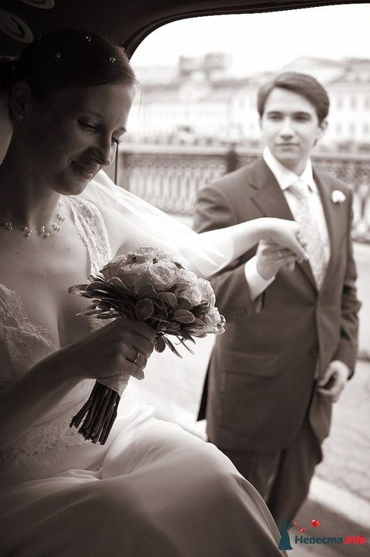 Фото 103716 в коллекции Свадебные фото - Фотограф Alexandr Osipov